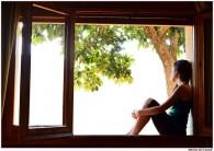 Fenêtre vue extérieure